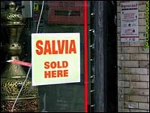 Salvia Media Controversy