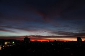 Salvia Trip - dusk
