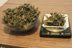 How to make salvia extract 10 grams of leaves