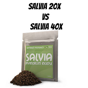 Salvia 20X vs Salvia 40X – What works for you