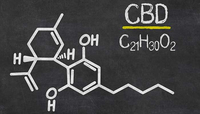 CBD products: An overview of cannabidiol products currently available in the market