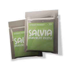 Salvia Pack 20x and 10x